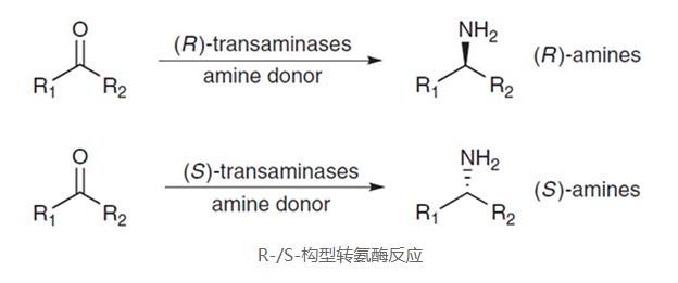 影响酶制剂使用效果的因素