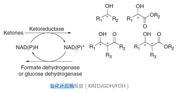 新型生物酶在大豆蛋白饮料中的新应用