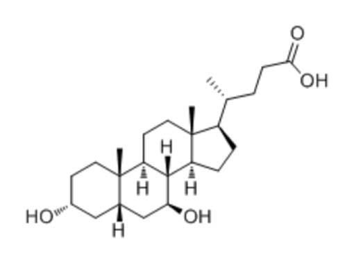 熊去氧胆酸(UDCA)